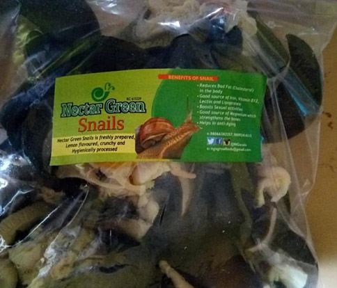Snail Farming Business Making Profit By Value Addition 2